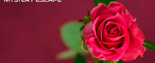 """Saint Valentin 2017 – """"double date"""" et 1 bouteille offerte"""